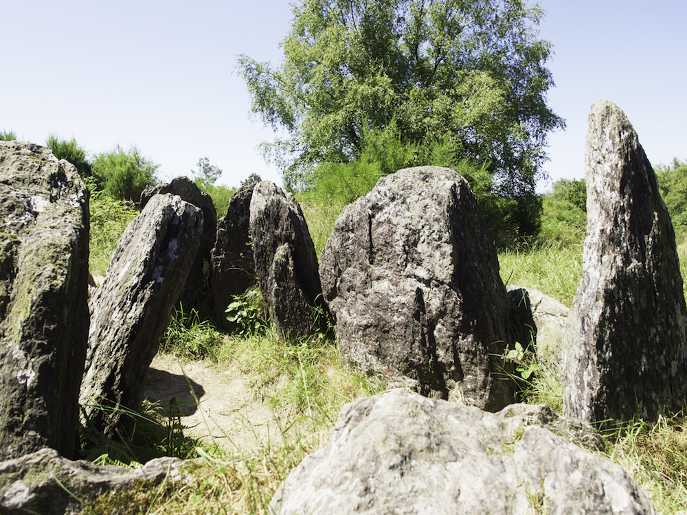menhirs, standing stones in Brittany, Paimpont and Broceliande forest