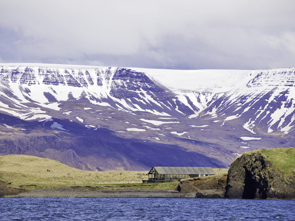 Videy Island Iceland, Reykjavik day trips