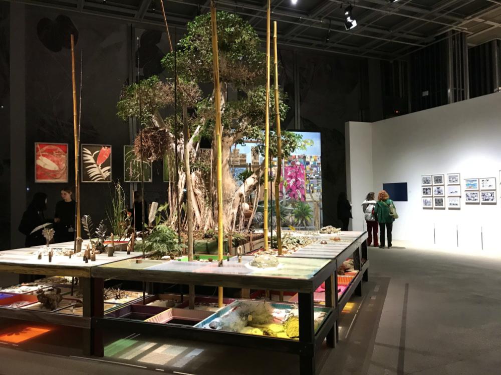 Cartier Foundation for Contemporary Art, Paris exhibitions news