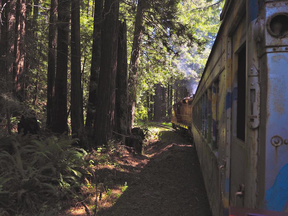 Skunk Train, what to do in mendocino, north california