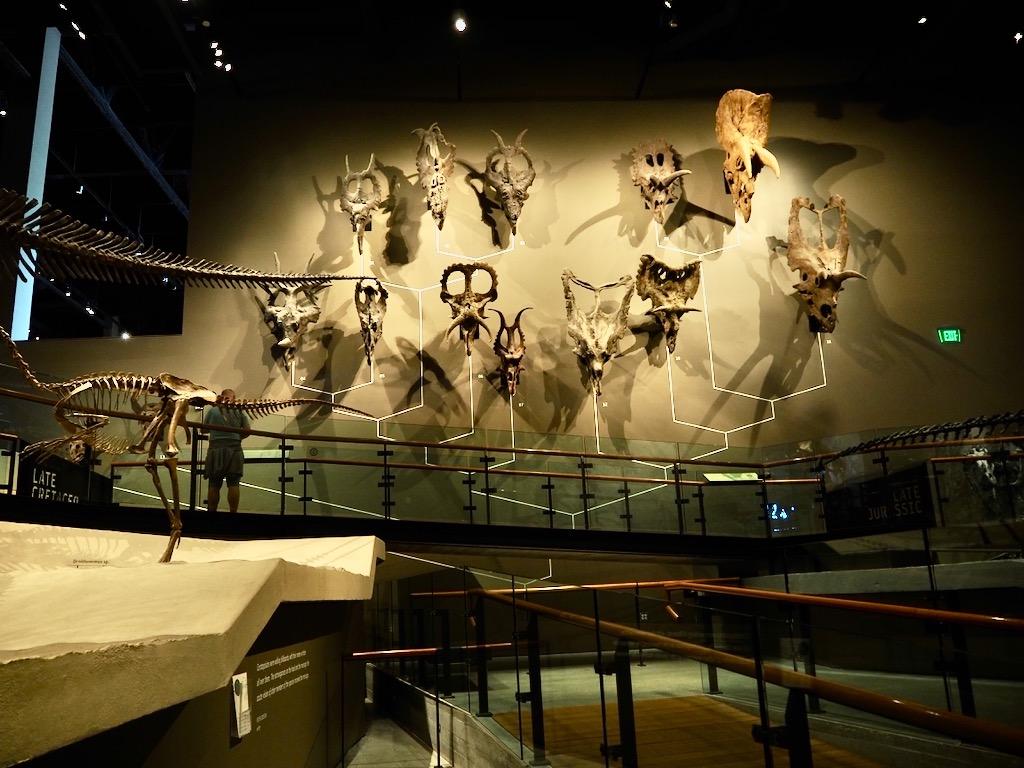 Natural History Museum of Utah, dinosaurs of Utah, museums in salt lake city