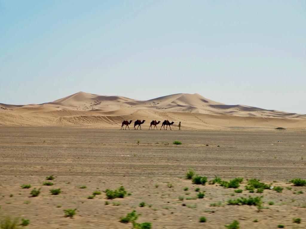 how to visit sahara, sahara desert holiday