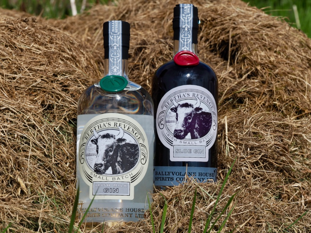 Bertha's Revenge gin, best gins, world gin day