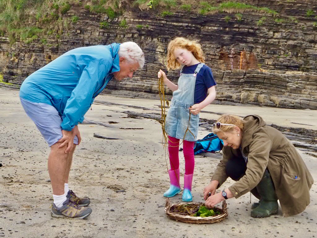 learn about seaweed, seaweed guru Ireland, what seaweed to eat