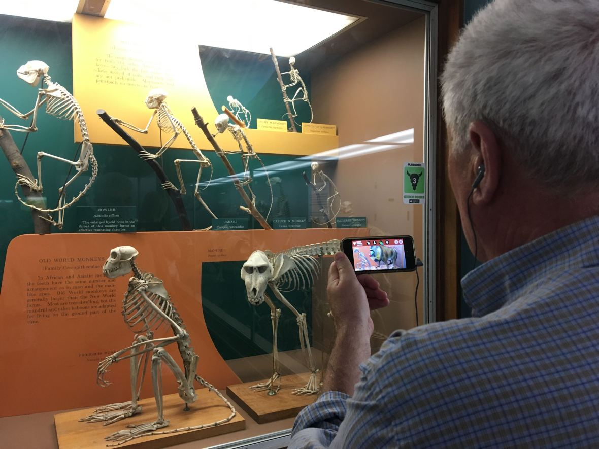 where to see augmented reality exhibitions