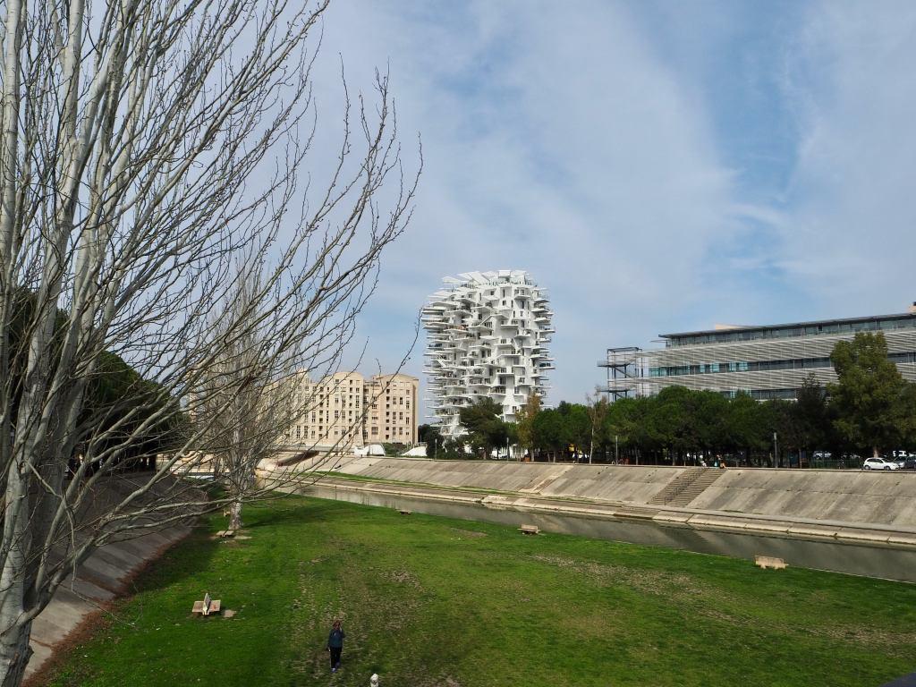l'Arbre Blanc Sou Foukimoto, modern architecture montpellier, montpellier architecture, montpellier